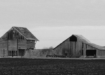 Minnesota Life Estate